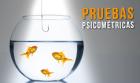 Pruebas-Psico_140x83