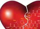 ¿Que es la hormona del amor?